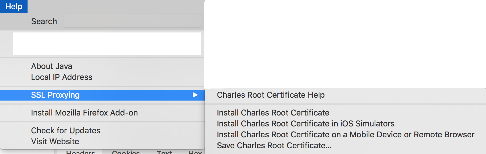Charles proxy network debugging tool on iOS